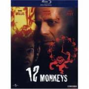 name  12 monkeys  import